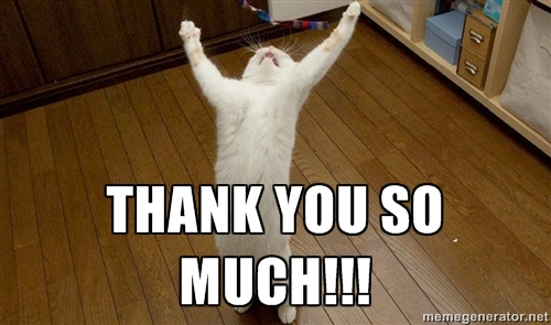 Funny Thank You Cat Memes : Lincoln casino free spins